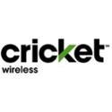 logo-cricket